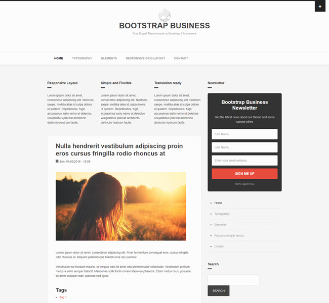 Bootstrap Business free bootstrap template for drupal