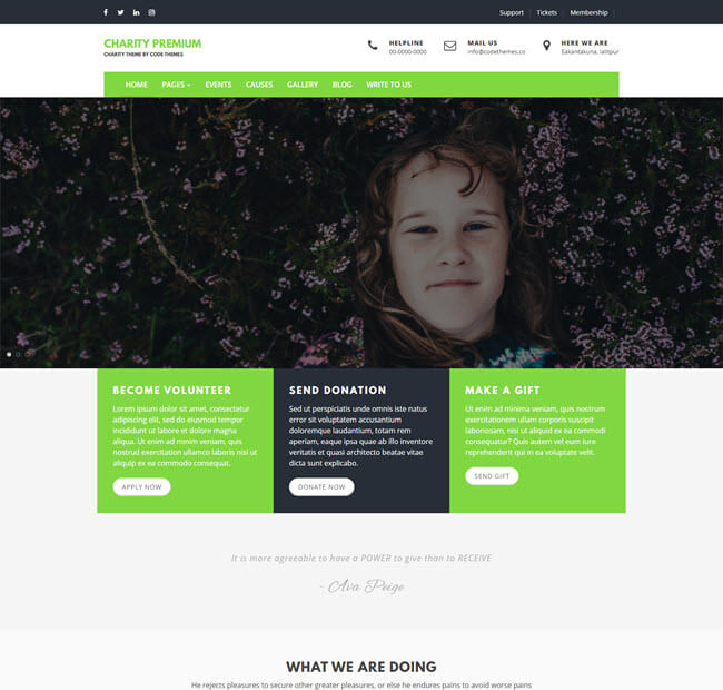 Charity Review free theme for WP
