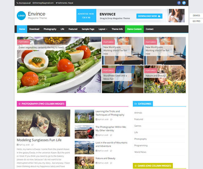 envince blog and magazine WP theme