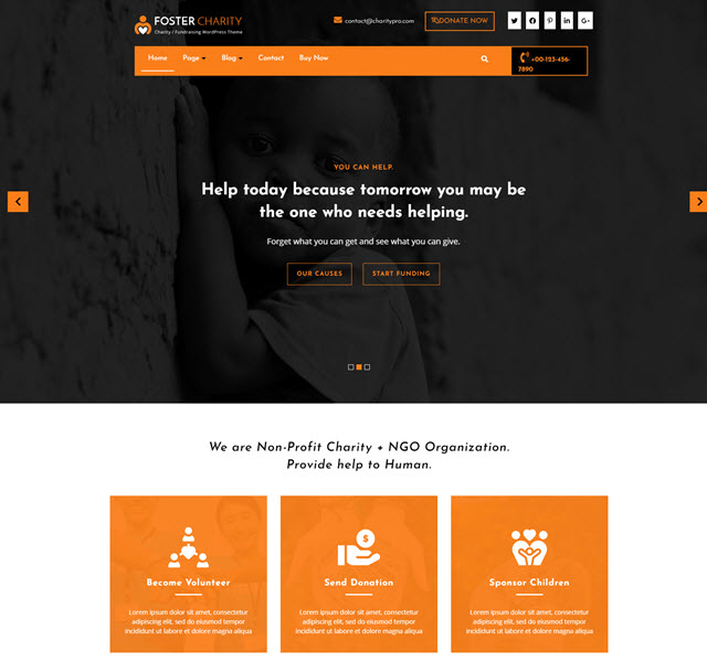 Foster charity free WP theme