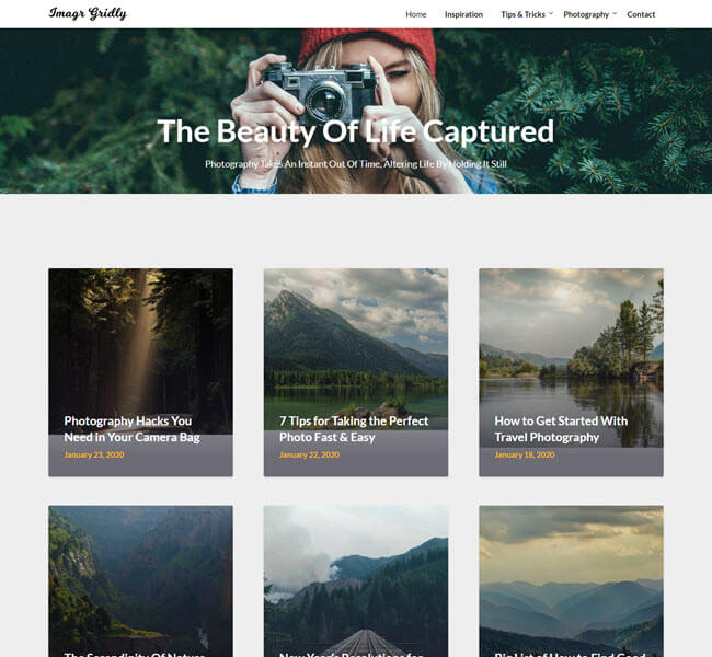 image gridly free photography WordPress theme
