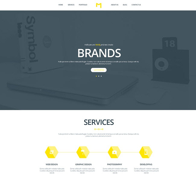Molly free psd single page website