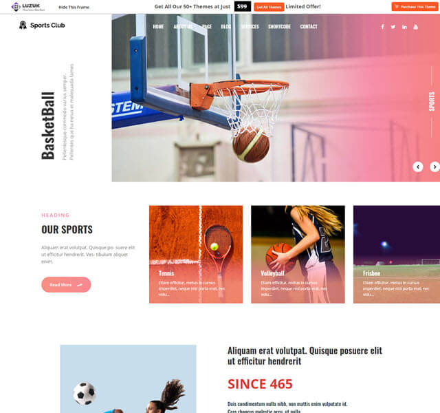 Multi-sports free sports and fitness  WP theme