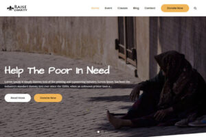 free charity wordpress theme for NGOs and fundraising websites