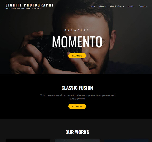 Signify free WP theme for photography